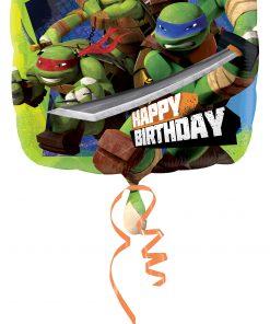 SD-SQ: Ninja Turtles Bday